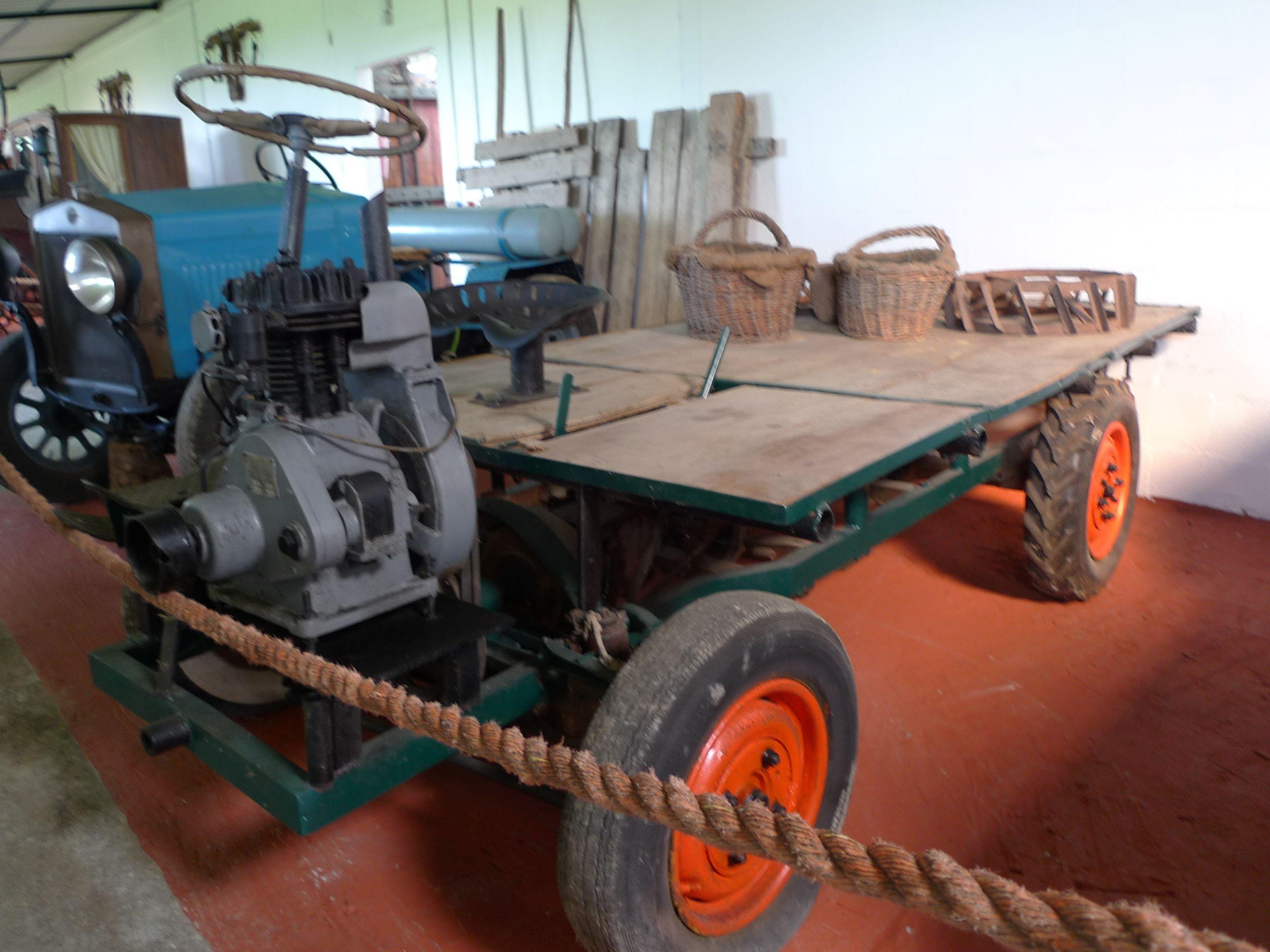 Coltivatore diretto, imprenditore agricolo professionale (IAP), società agricole.